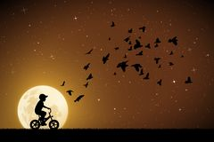 Boy on bike and pigeons on moonlit night. Vector illustration with silhouettes of child on bicycle and flocks of birds in park. Full moon in starry sky vector illustration