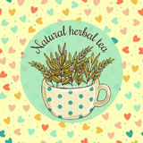 Vector illustration sketch card - natural herbal tea Royalty Free Stock Photography