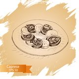Vector illustration sketch - cheese. mozzarella, basil. Food card Royalty Free Stock Photos