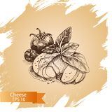 Vector illustration sketch - cheese, salad caprese. mozzarella, basil, tomato. Food card Royalty Free Stock Photo