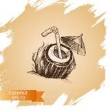 Vector illustration sketch coconut. Illustration - exotic fruit. Food card Royalty Free Stock Images