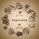 Vector illustration sketch of vegetables. Tomato, Peas, broccoli, asparagus, artichoke, cabbage, eggplant, avocado, arugula, basil. Vector illustration sketch of Royalty Free Stock Photos