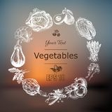 Vector illustration sketch of vegetables. Tomatoe, Peas, broccoli, asparagus, artichoke, cabbage, eggplant, avocado, arugula, bazi. Vector illustration sketch of Royalty Free Stock Images