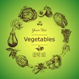 Vector illustration sketch of vegetables. Tomatoe, Peas, broccoli, asparagus, artichoke, cabbage, eggplant, avocado, arugula, bazi. Vector illustration sketch of Stock Image