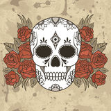 Vector illustration of a skull Stock Photography