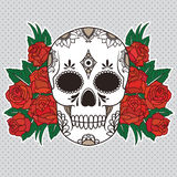 Vector illustration of a skull Royalty Free Stock Image