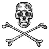 Vector illustration of skull and crossbones. Royalty Free Stock Image