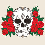 Vector illustration of a skull isolated Royalty Free Stock Photo