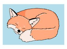 Vector illustration of sleeping cartoon fox on white background. Colorful art of hand drawn cute fox on blue background vector illustration