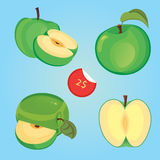 Vector illustration of sliced green apple. And prise Royalty Free Stock Photo