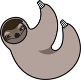 Vector illustration of a sloth. Vector illustration of a stylized sloth Stock Image