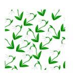 Snowdrop flower pattern. Vector illustration , snowdrop flower, spring plant , pattern Royalty Free Stock Photo