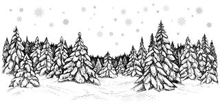 Vector illustration of snowy firs. Winter forest covered with the snow, hand drawn sketch. Winter coniferous trees forest covered with the snow, hand drawn Royalty Free Stock Photography
