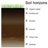 Vector illustration of soil horizons (layers). Easy to edition Stock Photo