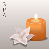 Vector illustration of spa with flower and candle. Vector colorful illustration of spa with flower and candle Stock Photo