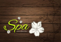 Vector illustration. Spa Resort or Beauty Business Background. Eco Design. Royalty Free Stock Photography