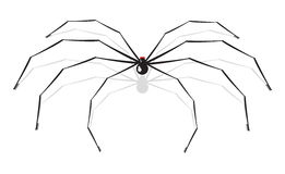 Vector illustration of a spider Royalty Free Stock Photo