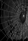 Vector illustration of spider web or cobweb on black background Stock Image