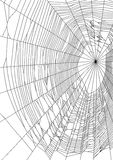Vector illustration of spider web or cobweb on white background Royalty Free Stock Image