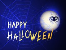 Vector illustration with spidere and web on the night background with text. Stock Images