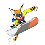 Vector illustration of sportive leopard on a snowboard Royalty Free Stock Photography