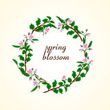 Vector illustration of spring blossom Royalty Free Stock Images