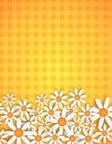 Blossom background. Vector illustration of spring flowers on ginham background vector illustration
