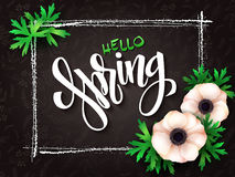 Vector illustration of spring lettering - hello spring with frame, anemone flowers and doodle background Stock Photography