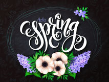 Vector illustration of spring lettering - hello spring with frame, anemone and lilac flowers and doodle background Royalty Free Stock Photos