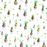 Vector illustration spring seamless pattern with onions. Vector illustration spring seamless pattern with green onions in cans and sprouts and circles Royalty Free Stock Photography