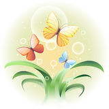 Vector illustration with a sprouts and butterflies Royalty Free Stock Photo