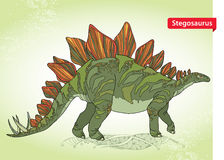 Vector illustration of Stegosaurus armatus or covered lizard on the green background. Series of prehistoric dinosaurs. Stock Photos