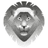 Vector illustration with stippling of the head of lion. Royalty Free Stock Image
