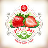 Vector illustration of a strawberry with leaves Royalty Free Stock Photos