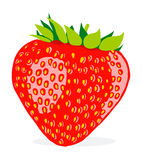 Vector illustration of strawberry  on white background Royalty Free Stock Photography