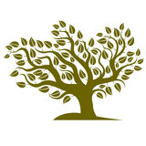 Vector illustration of stylized branchy tree  on white b Royalty Free Stock Image