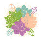 Vector illustration with succulents Stock Photo