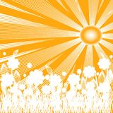 Vector illustration of summer background Royalty Free Stock Image