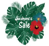 Vector Summer Sale Palm Leaves Royalty Free Stock Image