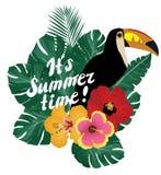 Vector Summer Time Toucan Bird Stock Photo