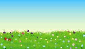 Vector illustration of sunny meadow with green grass and flowers. Nature decorative design Royalty Free Stock Photography