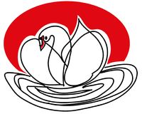 Swan on the lake vector illustration