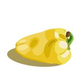 Vector illustration of a sweet pepper Stock Images