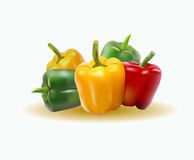Vector illustration sweet pepper Royalty Free Stock Photos