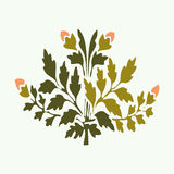 Vector illustration symmetric blooming plant with flowers and leaf Royalty Free Stock Image