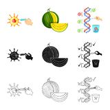Vector illustration of test and synthetic symbol. Collection of test and laboratory stock vector illustration. Isolated object of test and synthetic sign. Set vector illustration