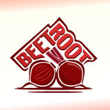 Vector illustration on the theme of  beetroot Royalty Free Stock Image