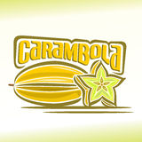Vector illustration on the theme of carambola Royalty Free Stock Image