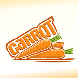 Vector illustration on the theme of  carrot Stock Photos