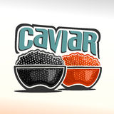 Vector illustration on the theme of caviar Royalty Free Stock Images